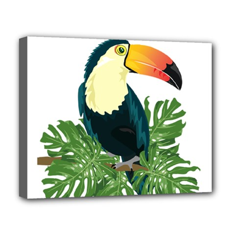 Tropical Birds Deluxe Canvas 20  X 16  (stretched)