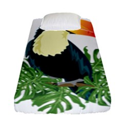Tropical Birds Fitted Sheet (single Size)