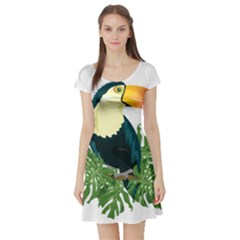 Tropical Birds Short Sleeve Skater Dress