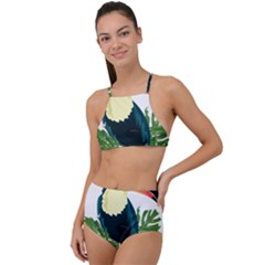 Tropical Birds High Waist Tankini Set