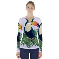 Tropical Birds V Neck Long Sleeve Top