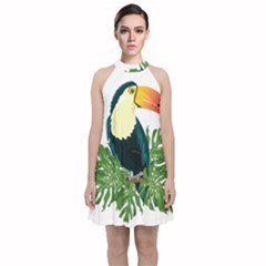 Tropical Birds Velvet Halter Neckline Dress