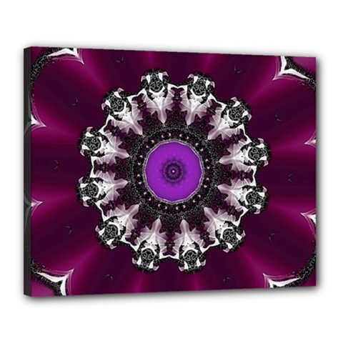 Kaleidoscope Round Circle Geometry Canvas 20  X 16  (stretched)
