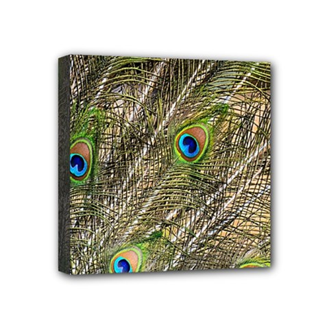 Green Peacock Feathers Color Plumage Mini Canvas 4  X 4  (stretched) by Pakrebo