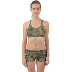 Green Peacock Feathers Color Plumage Back Web Gym Set by Pakrebo