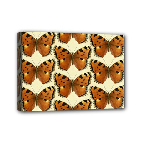 Butterflies Insects Mini Canvas 7  X 5  (stretched) by Mariart