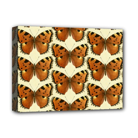 Butterflies Insects Deluxe Canvas 16  X 12  (stretched)  by Mariart