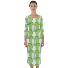 Herb Ongoing Pattern Plant Nature Quarter Sleeve Midi Bodycon Dress