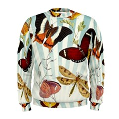 My Butterfly Collection Men s Sweatshirt