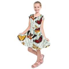 My Butterfly Collection Kids  Short Sleeve Dress