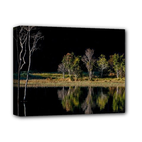 Soi Ball Symmetry Scenery Reflect Deluxe Canvas 14  X 11  (stretched) by Pakrebo