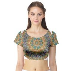 Colorful Pattern Color Short Sleeve Crop Top