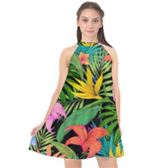 Tropical Adventure Halter Neckline Chiffon Dress