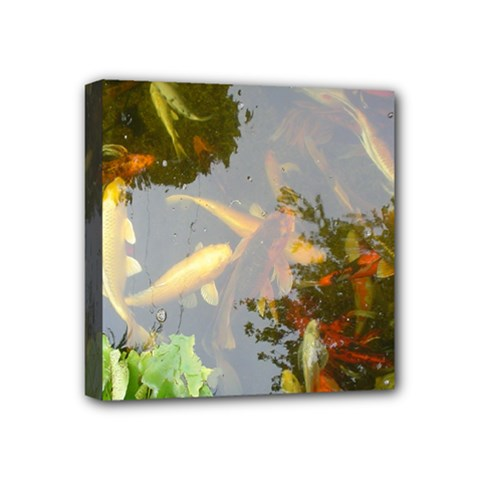 Koi Fish Pond Mini Canvas 4  X 4  (stretched)