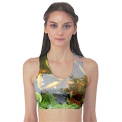 Koi Fish Pond Sports Bra
