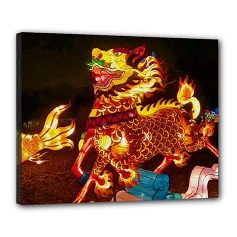 Dragon Lights Canvas 20  X 16  (stretched)