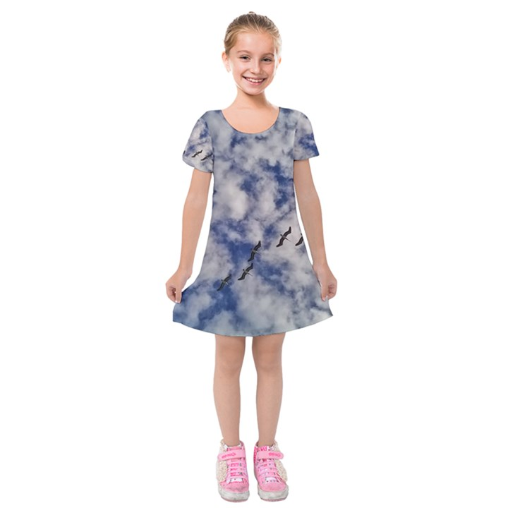 Pelicans In Flight Kids  Short Sleeve Velvet Dress