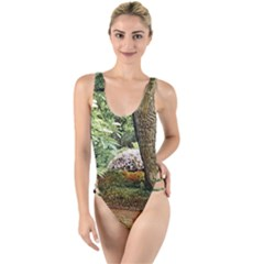 Garden Of The Phoenix High Leg Strappy Swimsuit