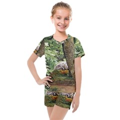 Garden Of The Phoenix Kids  Mesh Tee And Shorts Set by Riverwoman