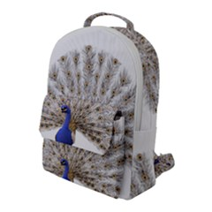 Peacock Colorful Bird Feather Blue Flap Pocket Backpack (large)
