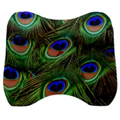 Peacock Feathers Plumage Iridescent Velour Head Support Cushion