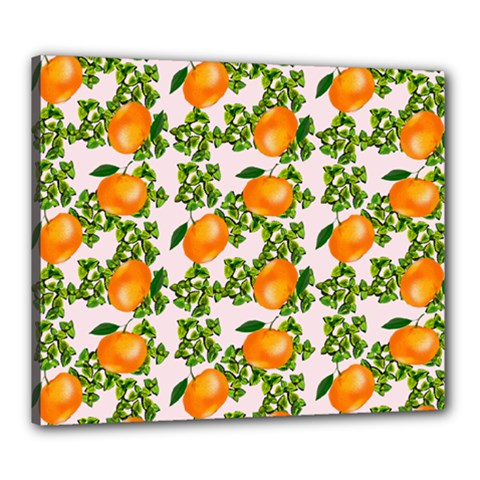 Citrus Tropical Orange Pink Canvas 24  X 20  (stretched)