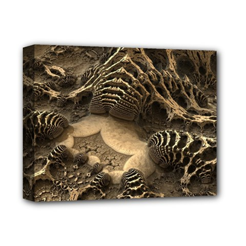 Fractal Bones Cave Fossil Render Deluxe Canvas 14  X 11  (stretched) by Pakrebo