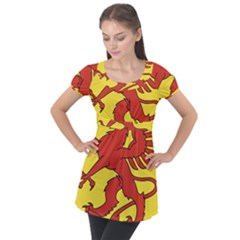 Dragon Crest Flag Swiss Griffin Puff Sleeve Tunic Top