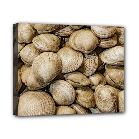 Shellfishs Photo Print Pattern Canvas 10  X 8  (stretched)