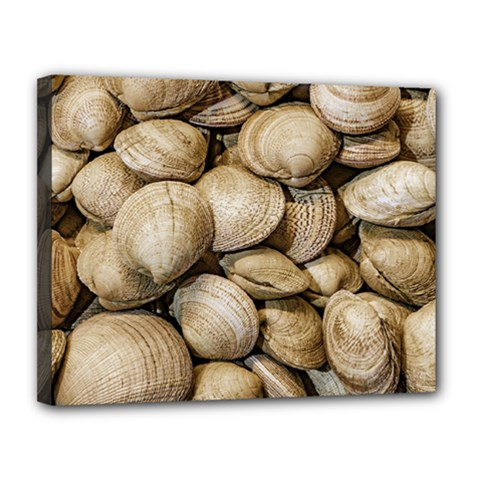 Shellfishs Photo Print Pattern Canvas 14  X 11  (stretched)