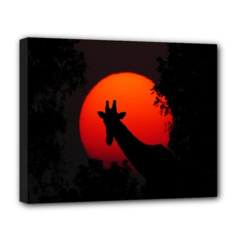 Giraffe Animal Africa Sunset Deluxe Canvas 20  X 16  (stretched)