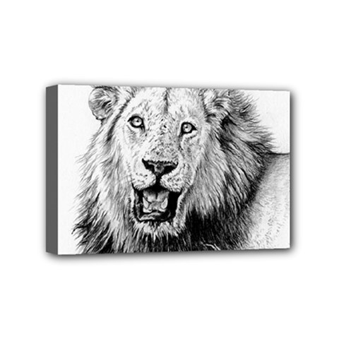 Lion Wildlife Art And Illustration Pencil Mini Canvas 6  X 4  (stretched)