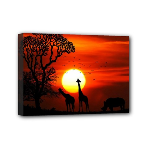 Animals Birds Dawn Giraffe Mini Canvas 7  X 5  (stretched)