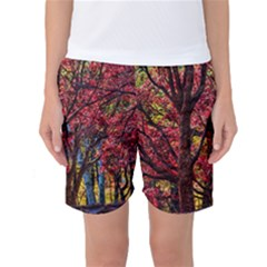 Autumn Colorful Nature Trees Women s Basketball Shorts