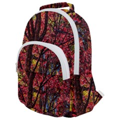 Autumn Colorful Nature Trees Rounded Multi Pocket Backpack