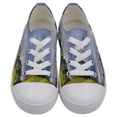 Vietnam Terraces Rice Silk Kids  Low Top Canvas Sneakers