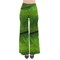 Green Leaf Plant Freshness Color So Vintage Palazzo Pants by Pakrebo