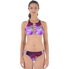 Clematis Structure Close Up Blossom Perfectly Cut Out Bikini Set