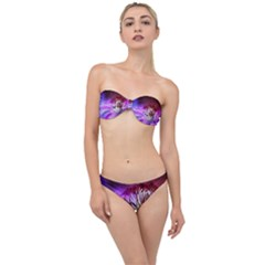 Clematis Structure Close Up Blossom Classic Bandeau Bikini Set