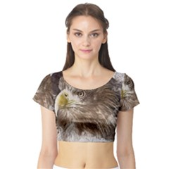 Sea Eagle Raptor Nature Predator Short Sleeve Crop Top
