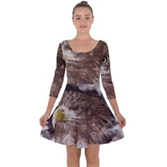 Sea Eagle Raptor Nature Predator Quarter Sleeve Skater Dress