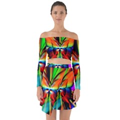 Zoom Butterfly Insect Colorful Off Shoulder Top With Skirt Set