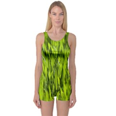 Agricultural Field   One Piece Boyleg Swimsuit by rsooll