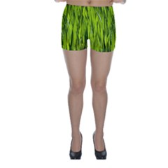 Agricultural Field   Skinny Shorts by rsooll