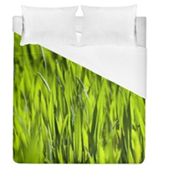 Agricultural Field   Duvet Cover (queen Size) by rsooll
