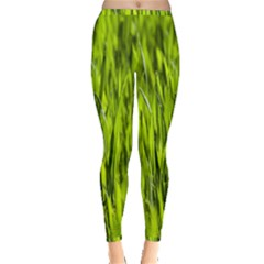 Agricultural Field   Inside Out Leggings by rsooll