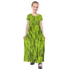 Agricultural Field   Kids  Short Sleeve Maxi Dress by rsooll