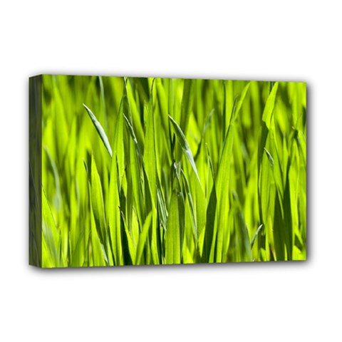 Agricultural Field   Deluxe Canvas 18  X 12  (stretched) by rsooll