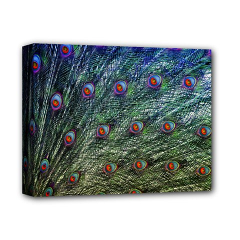 Peacock Feathers Colorful Feather Deluxe Canvas 14  X 11  (stretched) by Pakrebo