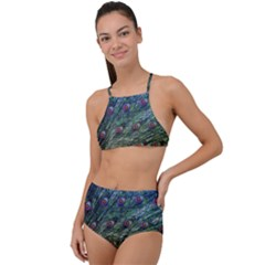 Peacock Feathers Colorful Feather High Waist Tankini Set by Pakrebo